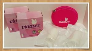 VIDASEC