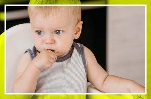 ¿Empezando con el Baby Led Weaning? 10 platos perfectos para empezar + receta extra